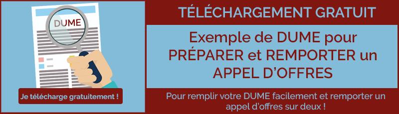 Exemple de DUME - Appels d'offres conseils